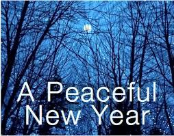 new year2014