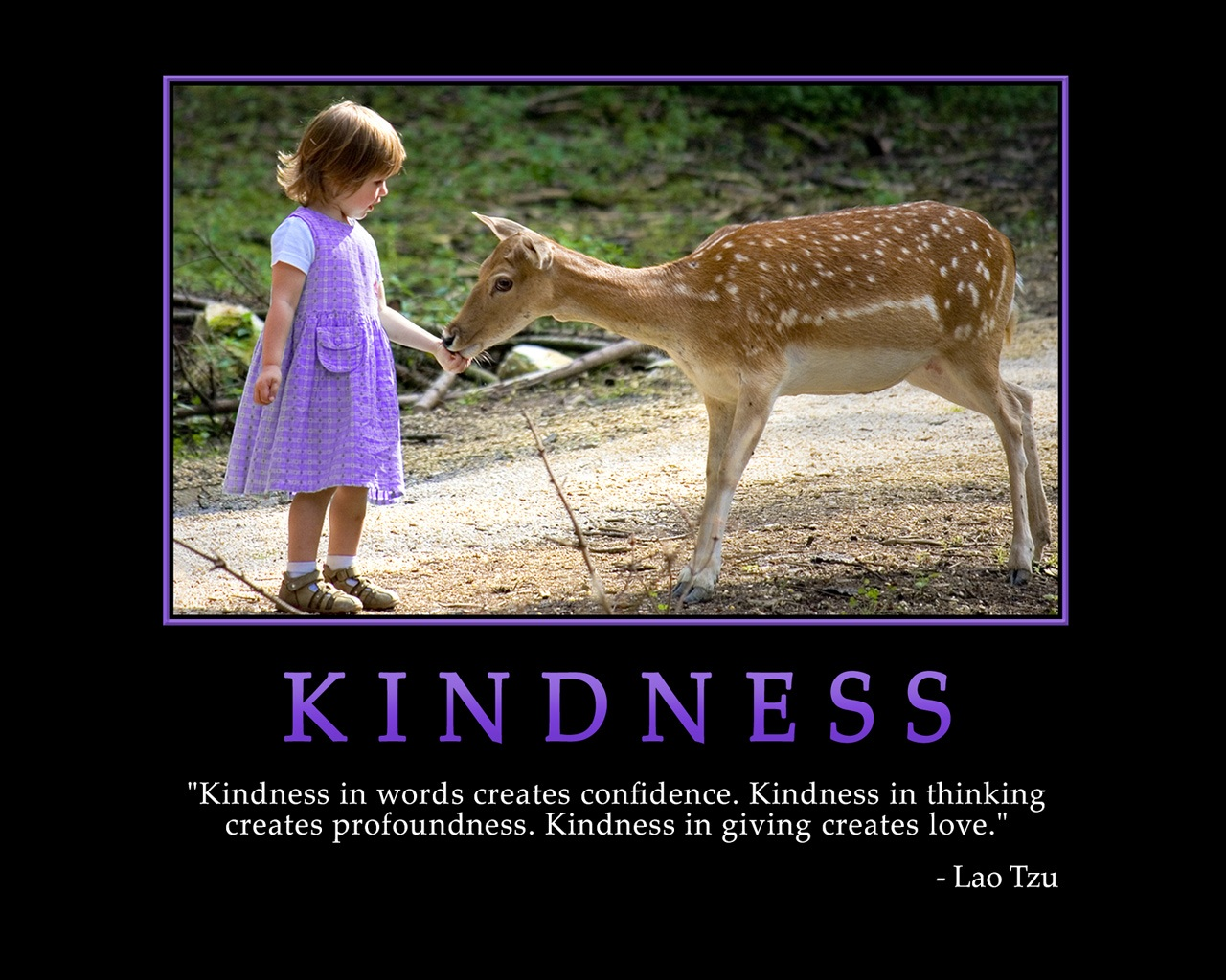 motivational-funny-sacred-quotes-kindness-440956