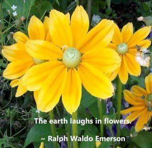 EarthLaughs-RalphWaldoEmerson