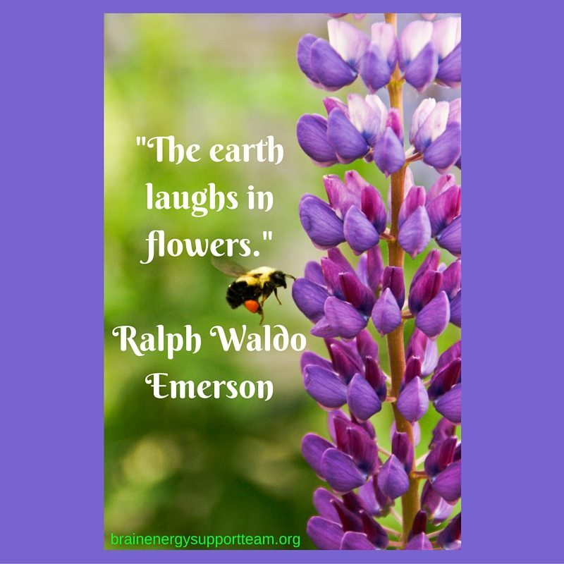 -The earth laughs in flowers.- Ralph Waldo Emerson