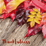 It's not too late to share your thankfulness!