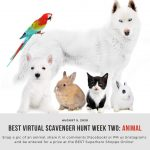 TODAY: BEST Virtual Scavenger Hunt Kicks Off Week Two!