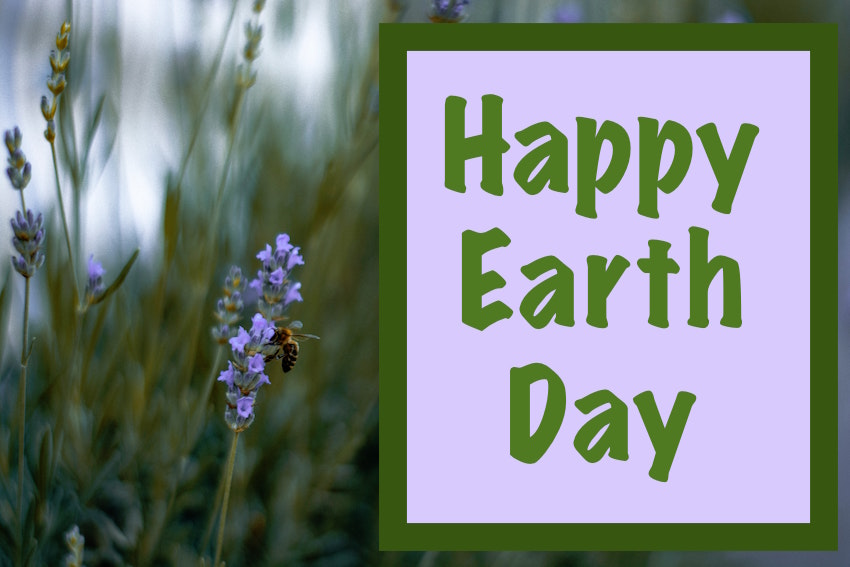 Happy Earth Day message on a photo of lavendar with a bee.